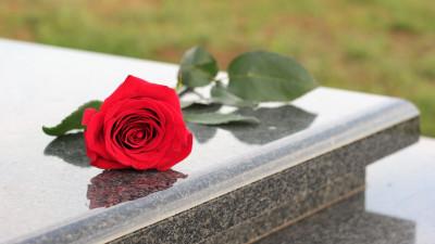 Более 2 тыс. раз в Подмосковье воспользовались сервисом по предоставлению мест для захоронений