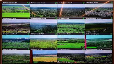 Более 60 лесных пожаров зарегистрировали в Подмосковье с помощью видеомониторинга