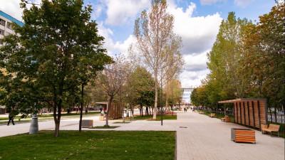 Новую зеленую пешеходную зону открыли в Реутове