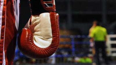 Подмосковные спортсмены завоевали рекордное количество медалей на первенстве ЦФО по боксу