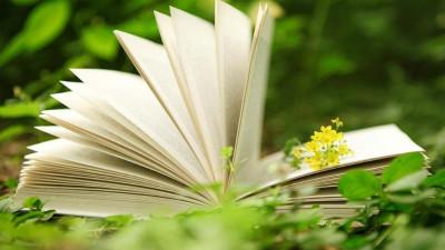 Поэтический марафон «Навигатор» пройдет в подмосковных библиотеках