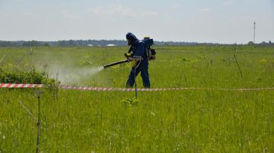 Порядка 9 тыс. га земель Подмосковья обработали от борщевика