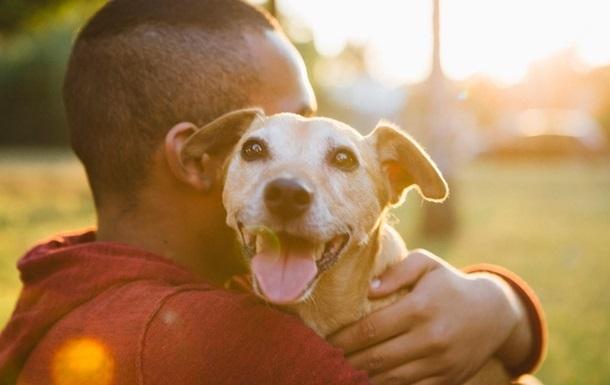 Ученые выявили новый коронавирус, которым собаки заражают человека