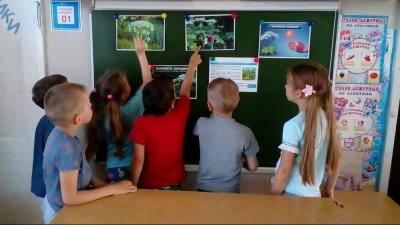 Уроки безопасности при обращении с борщевиком прошли в 200 школах и детских садах региона