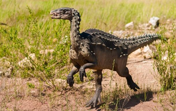 В Китае найдены останки динозавра неизвестного вида