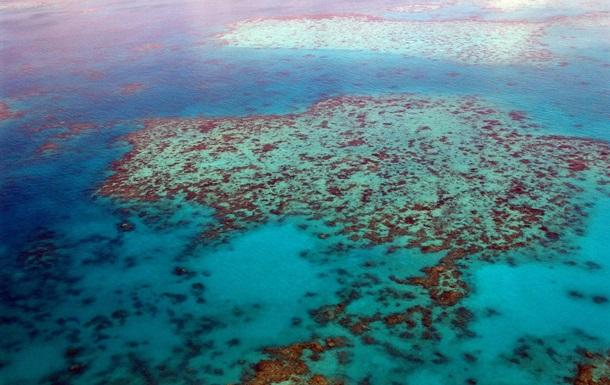 Большой Барьерный риф оказался в опасности из-за климатических изменений