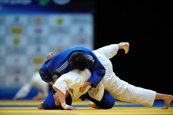 Дзюдоисты из Подмосковья завоевали 15 медалей на чемпионате ЦФО