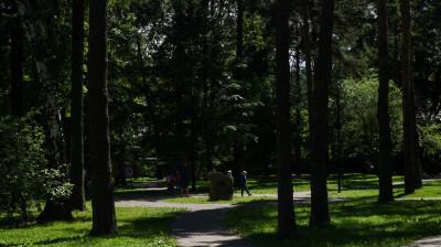 Сбор предложений по определению «зеленых зон»для защиты от застройки стартовал в Подмосковье