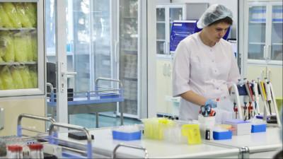 Светлана Стригункова поздравила подмосковных врачей с Днем медработника