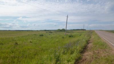 Свыше 650 многодетных семей обеспечили земельными участками в Подмосковье за 5 месяцев