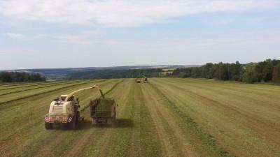 Заготовка кормов для скота на зиму началась вПодмосковье