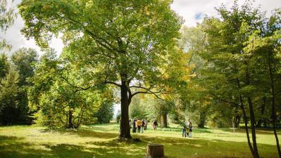 Новый парк появится на территории бывшего детского сада в Краснознаменске
