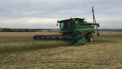 Почти 16,5 тыс. тонн зерновых собрали сельхозпредприятия Подмосковья