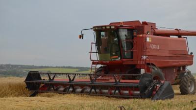 Уборочная кампания озимых зерновых и масличных культур началась в Московской области