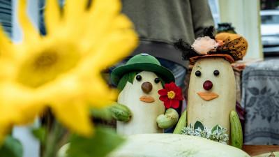День зарайского огородника пройдет в Подмосковье