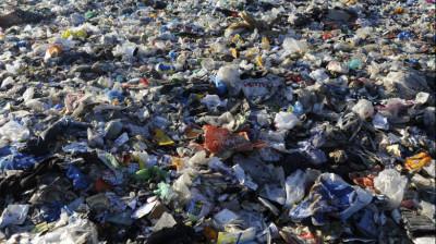 Незаконная свалка мусора