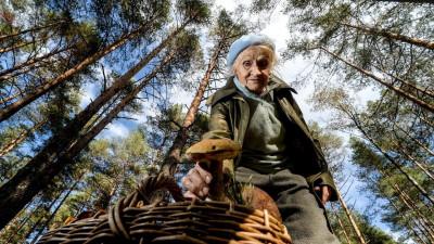 Почти 90 человек заблудились в лесах Подмосковья в августе