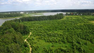 Почву на территории лесного фонда Подмосковья готовят к осенним посадкам