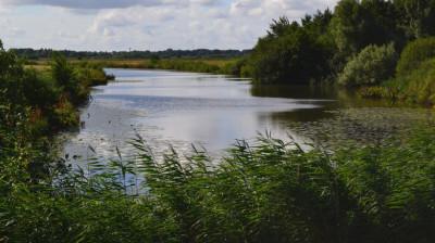 Тринадцать водоемов уже очистили в Московской области по губернаторской программе