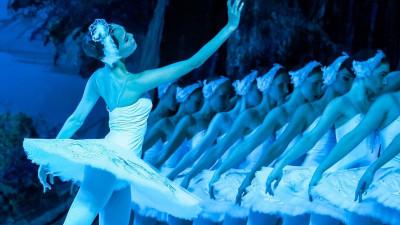 «Лебединое озеро» откроет сезон театра «Русский балет»
