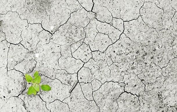 Европу ожидают экстремальные засухи – ученые