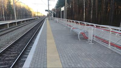 Голосование за ремонт железнодорожных платформ в Подмосковье стартовало на «Доброделе»