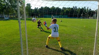 Записать ребенка в спортивную школу в Подмосковье можно в онлайн формате