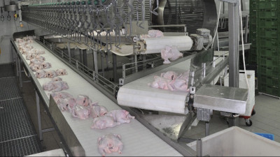 Производство мяса увеличилось на 7,5 тыс. тонн в Подмосковье