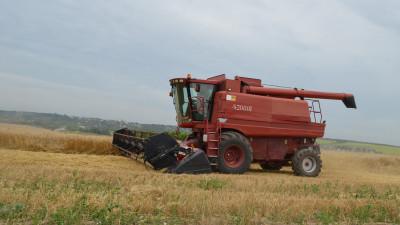 Сбор урожая озимых зерновых культур подходит к завершению в Подмосковье