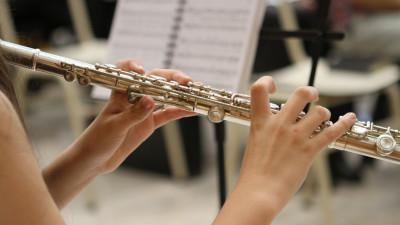 Свыше 100 ДШИ оснастят новыми музыкальными инструментами в Подмосковье до конца года