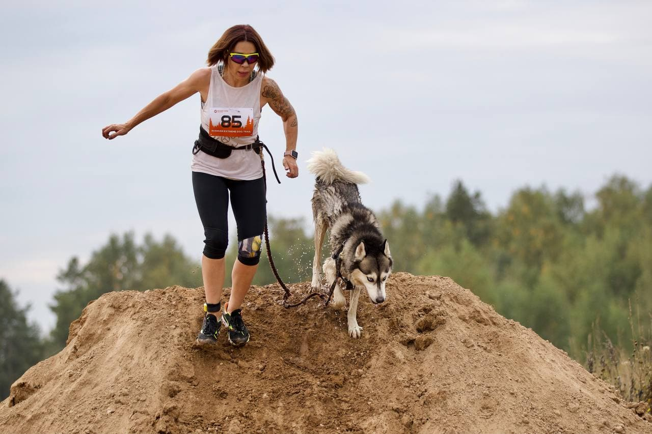 В Раменском состоялся экстремальный каникросс «Russian extreme dog trail»