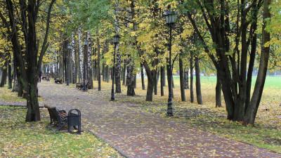 Городской парк в Долгопрудном