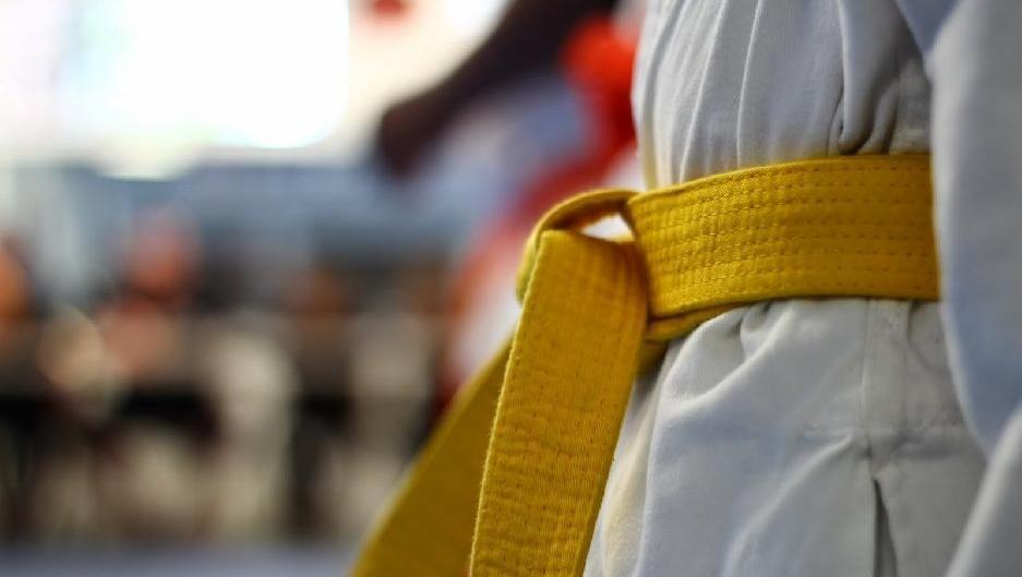 Дзюдоисты из Подмосковья завоевали 23 медали на первенстве ЦФО