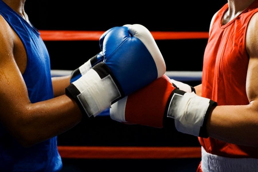 Подмосковные боксёры завоевали 36 медалей на всероссийском турнире